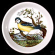 Portmeirion Birds Of Britain Pin Dish BLUE TITMOUSE