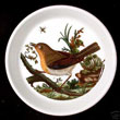 Portmeirion Birds Of Britain Pin Dish ROBIN - Mint